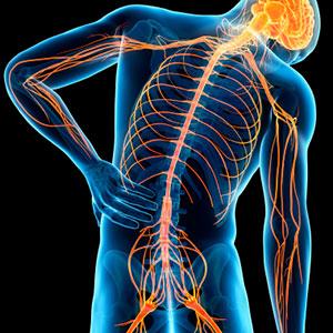 Restaxil gegen chronische Rückenschmerzen